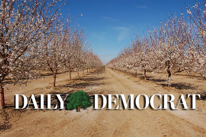 Bulletin d'affichage des prochains événements du Daily Democrat – Daily Democrat